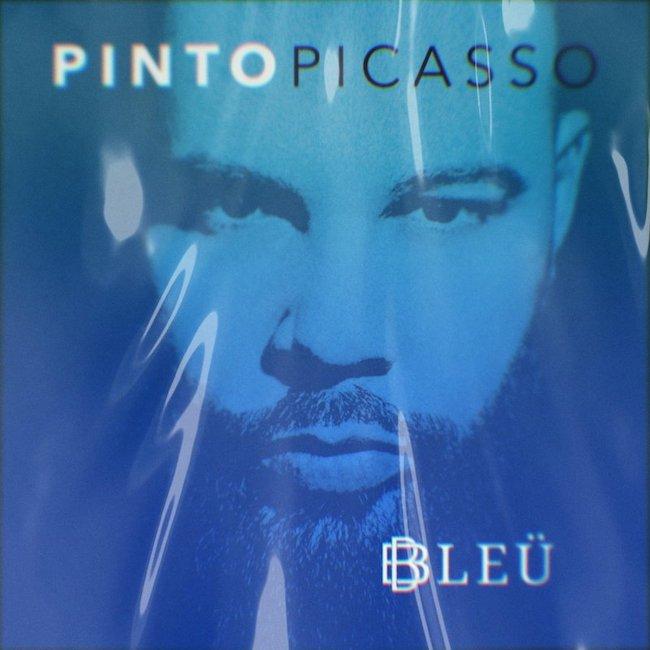pinto picasso bleu